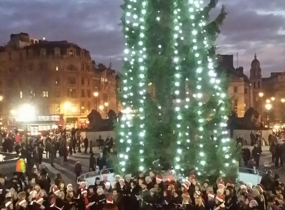Trafalgar Square carols raises £308.69 for Amnesty International